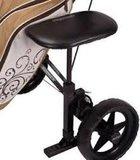 Bagboy Cart Seat_